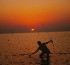 2. Sunset Fishing. Photo Credit: R. Roach Will (WO-4723-CD-42B), Washington DC Library, United States Fish and Wildlife Service Digital Library System (http://images.fws.gov), United States Fish and Wildlife Service (http://www.fws.gov), United States Department of the Interior (http://www.doi.gov), Government of the United States of America (USA).