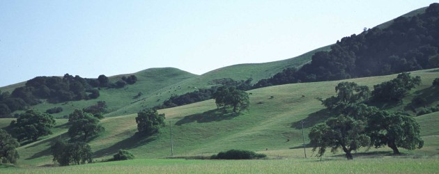 1. Rangeland with Beautiful Green Grass, Rolling Hills, and Green Trees, State of California, USA. Photo Credit: Lynn Betts (2000, http://photogallery.nrcs.usda.gov, NRCSCA00012), USDA Natural Resources Conservation Service (NRCS, http://www.nrcs.usda.gov), United States Department of Agriculture (USDA, http://www.usda.gov), Government of the United States of America (USA).