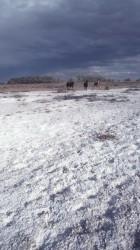 2. Facing Salt Challenges. Colorado River Basin, State of Utah, USA. Photo Credit: Ron Nichols (1994, http://photogallery.nrcs.usda.gov, NRCSUT03051), USDA Natural Resources Conservation Service (NRCS, http://www.nrcs.usda.gov), United States Department of Agriculture (USDA, http://www.usda.gov), Government of the United States of America (USA).