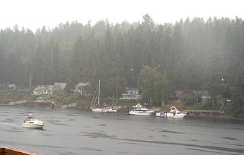 2. A Rainy Day at Gig Harbor, August 2000. State of Washington, USA. Photo Credit: Carol Baldwin, NOAA OMAO, National Oceanic and Atmospheric Administration Photo Library (http://www.photolib.noaa.gov), America's Coastlines Collection, National Oceanic and Atmospheric Administration (NOAA, http://www.noaa.gov), United States Department of Commerce (http://www.commerce.gov), Government of the United States of America (USA).