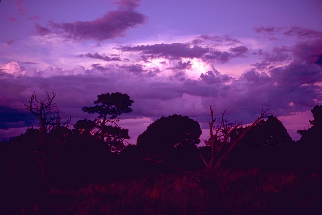 Beautiful Purple Sky at Carlsbad Caverns National Park, USA. Photo Credit: Gary M. Stolz, Washington DC Library, United States Fish and Wildlife Service Digital Library System (http://images.fws.gov, WO8073-010), United States Fish and Wildlife Service (FWS, http://www.fws.gov), United States Department of the Interior (http://www.doi.gov), Government of the United States of America (USA).