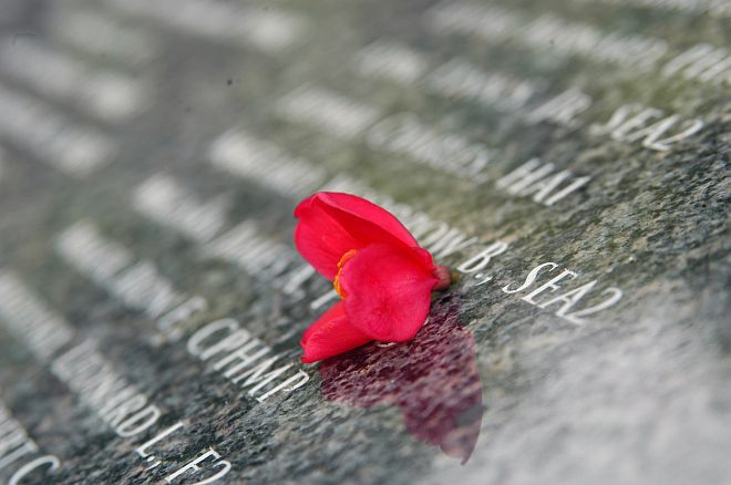 A Single Red Flower on a War Memorial. In June and July 1944 More Than 25,000 People Were Killed as the United States Liberated the Northern Mariana Islands of Tinian and Saipan, One of the Bloodiest Battles in History. June 15, 2004, American Memorial Park in Garapan, Saipan, Commonwealth of the Northern Mariana Islands (CNMI), USA. Photo Credit: Photographer's Mate 2nd Class Shawn M. Morrison, Navy NewsStand - Eye on the Fleet Photo Gallery (http://www.news.navy.mil/view_photos.asp, 040615-N-6914M-095), United States Navy (USN, http://www.navy.mil), United States Department of Defense (DoD, http://www.DefenseLink.mil or http://www.dod.gov), Government of the United States of America (USA).