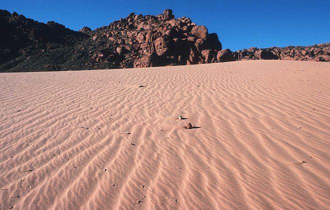 Coral Pink Sand Dunes State Park, State of Utah, USA. Photo Credit: Ron Nichols (1997, http://photogallery.nrcs.usda.gov, NRCSUT03009), USDA Natural Resources Conservation Service (NRCS, http://www.nrcs.usda.gov), United States Department of Agriculture (USDA, http://www.usda.gov), Government of the United States of America (USA).