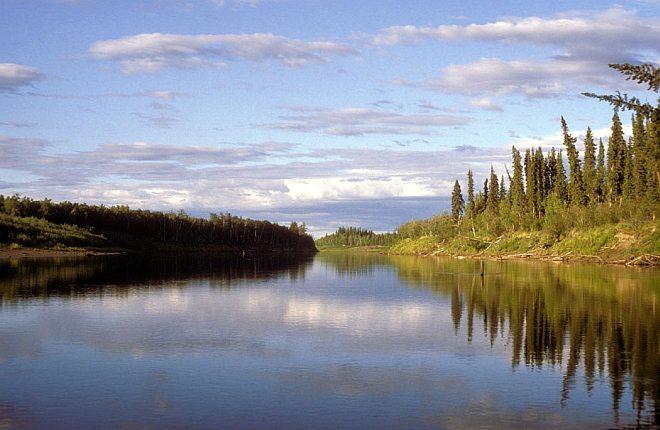 The Tree-Lined Nowitna River in the Summer, Nowitna National Wildlife Refuge, State of Alaska, USA. Photo Credit: M. LeFever, Alaska Image Library, United States Fish and Wildlife Service Digital Library System (http://images.fws.gov, NOW-0009), United States Fish and Wildlife Service (FWS, http://www.fws.gov), United States Department of the Interior (http://www.doi.gov), Government of the United States of America (USA).