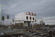 4. Fiercely Battered Trees and a House Remain Upright in Banda Aceh, Sumatra, Republik Indonesia. Photo Credit: Department of Defense photo by Michael L. Bak, Photo date: January 1, 2005, Navy NewsStand - Eye on the Fleet Photo Gallery (http://www.news.navy.mil/view_photos.asp, 050101-O-XXXXB-074), United States Navy (USN, http://www.navy.mil), United States Department of Defense (DoD, http://www.DefenseLink.mil or http://www.dod.gov), Government of the United States of America (USA).