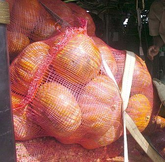 "1. Boxes of vegetables aboard a United States Air Force HH-60G Pave Hawk helicopter in Sri Lanka, one of the countries devastated by the wall of water caused by ""The Great Earthquake and Catastrophic Tsunami of 2004"" <http://ChamorroBible.org/gpw/gpw-The-Great-Earthquake-and-Catastrophic-Tsunami-of-2004.htm>. January 12, 2005, Dambula, Democratic Socialist Republic of Sri Lanka. Photo Credit: Master Sgt. Val Gempis, Air Force Link - Photos (http://www.af.mil/photos, 050112-F-1740G-010, ""Relief effort making progress""), United States Air Force (USAF, http://www.af.mil), United States Department of Defense (DoD, http://www.DefenseLink.mil or http://www.dod.gov), Government of the United States of America (USA)."