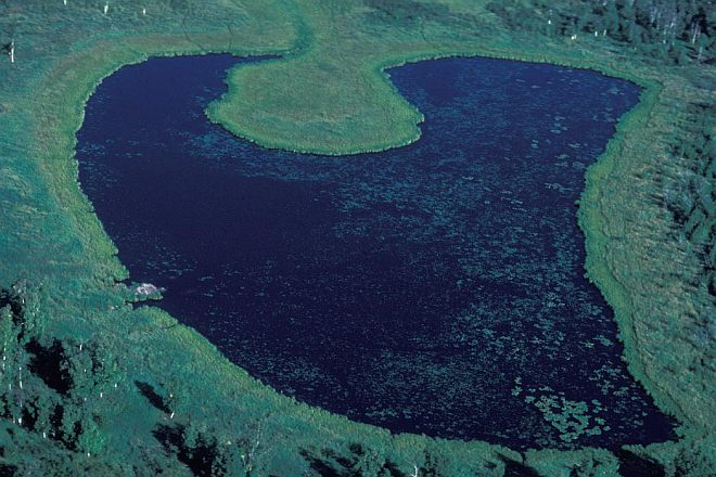 Aerial View of a Lake in the Wetlands of Innoko National Wildlife Refuge, State of Alaska, USA. Photo Credit: NCTC Image Library, United States Fish and Wildlife Service Digital Library System (http://images.fws.gov, AK/RO/02601), United States Fish and Wildlife Service (FWS, http://www.fws.gov), United States Department of the Interior (http://www.doi.gov), Government of the United States of America (USA).