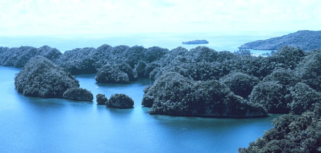 Beautiful View of Limestone Islets Sculptured in Karst Topography, August 1973. Malakal, Koror, Beluu er a Belau - Republic of Palau. Photo Credit: Dr. James P. McVey, NOAA Sea Grant Program; National Oceanic and Atmospheric Administration Photo Library (http://www.photolib.noaa.gov, mvey0133), Small World Collection, National Oceanic and Atmospheric Administration (NOAA, http://www.noaa.gov), United States Department of Commerce (http://www.commerce.gov), Government of the United States of America (USA). For further information about karst landscapes, see the United States Geological Survey (USGS) Open-file Report 97-536A titled Karst Topography - Teacher's Guide and Paper Model <http://wrgis.wr.usgs.gov/docs/parks/cave/karst.html> by Tau Rho Alpha, John P. Galloway, and John C. Tinsley III.