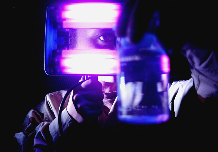 """She Closely Examines a Water Sample for Contamination Using a Blacklight at Balad Air Base on June 1, 2005, Al Jumhuriyah al Iraqiyah - Republic of Iraq. Photo Credit: Senior Airman Tim Beckham, Air Force Link - News (http://www.af.mil/news, June 2, 2005, """"Bio shop provides peace of mind"""", Image ID: 050601-F-0602B-001), United States Air Force (USAF, http://www.af.mil), United States Department of Defense (DoD, http://www.DefenseLink.mil or http://www.dod.gov), Government of the United States of America (USA)."""