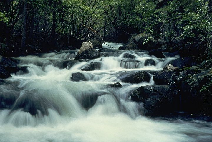 Miniature Waterfalls Are Created as the Waters Flow Over the Rocks. Photo Credit: Curtis J. Carley, Washington DC Library, United States Fish and Wildlife Service Digital Library System (http://images.fws.gov, WO-Scenic-2962), United States Fish and Wildlife Service (FWS, http://www.fws.gov), United States Department of the Interior (http://www.doi.gov), Government of the United States of America (USA).