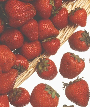 1. Strawberries: Red, Juicy, Sweet and Nutritious. Keith Weller (http://www.ars.usda.gov/is/graphics/photos, K3905-1), Agricultural Research Service (ARS, http://www.ars.usda.gov), United States Department of Agriculture (USDA, http://www.usda.gov), Government of the United States of America (USA).