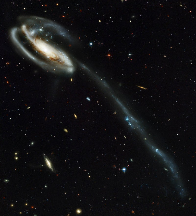 Spectacular, Beautiful, and Magnificent View of Peculiar-Looking Spiral Galaxy UGC 10214 -- Tadpole Galaxy (Arp 188) -- With Thousands of Galaxies In the Background, Draco Constellation. Photo Credit: Hubble's New Camera Delivers Breathtaking Views of the Universe, April 1, 2002 and April 9, 2002 (Release date: April 30, 2002), STScI-2002-11, NASA's Earth-orbiting Hubble Space Telescope (http://HubbleSite.org); H. Ford (JHU), G. Illingworth (UCSC/LO), M.Clampin (STScI), G. Hartig (STScI), the Advanced Camera for Surveys (ACS) Science Team, European Space Agency (ESA, http://SpaceTelescope.org), National Aeronautics and Space Administration (NASA, http://www.nasa.gov), Government of the United States of America (USA). The ACS Science Team: H. Ford, G. Illingworth, M. Clampin, G. Hartig, T. Allen, K. Anderson, F. Bartko, N. Benitez, J. Blakeslee, R. Bouwens, T. Broadhurst, R. Brown, C. Burrows, D. Campbell, E. Cheng, N. Cross, P. Feldman, M. Franx, D. Golimowski, C. Gronwall, R. Kimble, J. Krist, M. Lesser, D. Magee, A. Martel, W. J. McCann, G. Meurer, G. Miley, M. Postman, P. Rosati, M. Sirianni, W. Sparks, P. Sullivan, H. Tran, Z. Tsvetanov, R. White, and R. Woodruff.