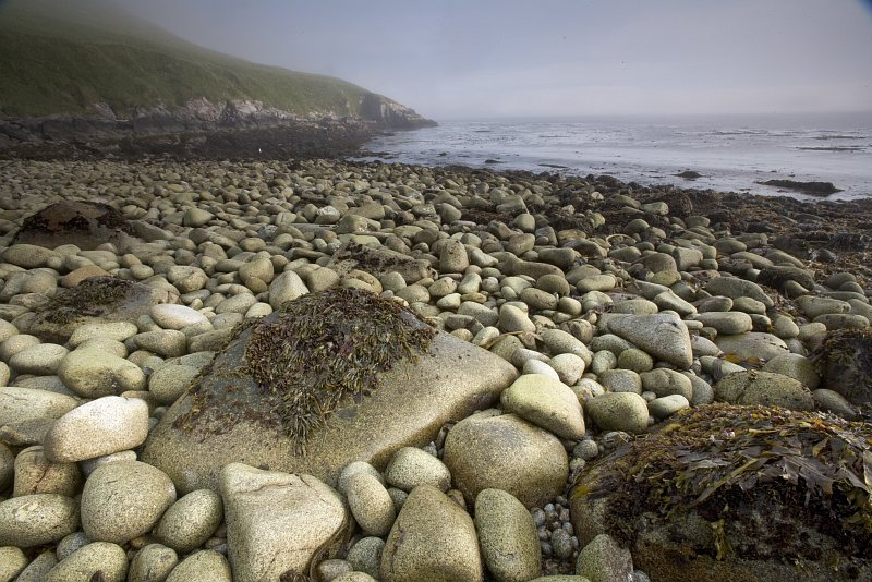 There Are Many Smooth Surfaced, Rounded Stones (Rocks) of Various Sizes On This Alaska Maritime National Wildlife Refuge (AMNWR) Beach at Chowiet Island, Semidi Islands, State of Alaska, USA. Photo Credit: Steve Hillebrand, Alaska Image Library, United States Fish and Wildlife Service Digital Library System (http://images.fws.gov), United States Fish and Wildlife Service (FWS, http://www.fws.gov), United States Department of the Interior (http://www.doi.gov), Government of the United States of America (USA).
