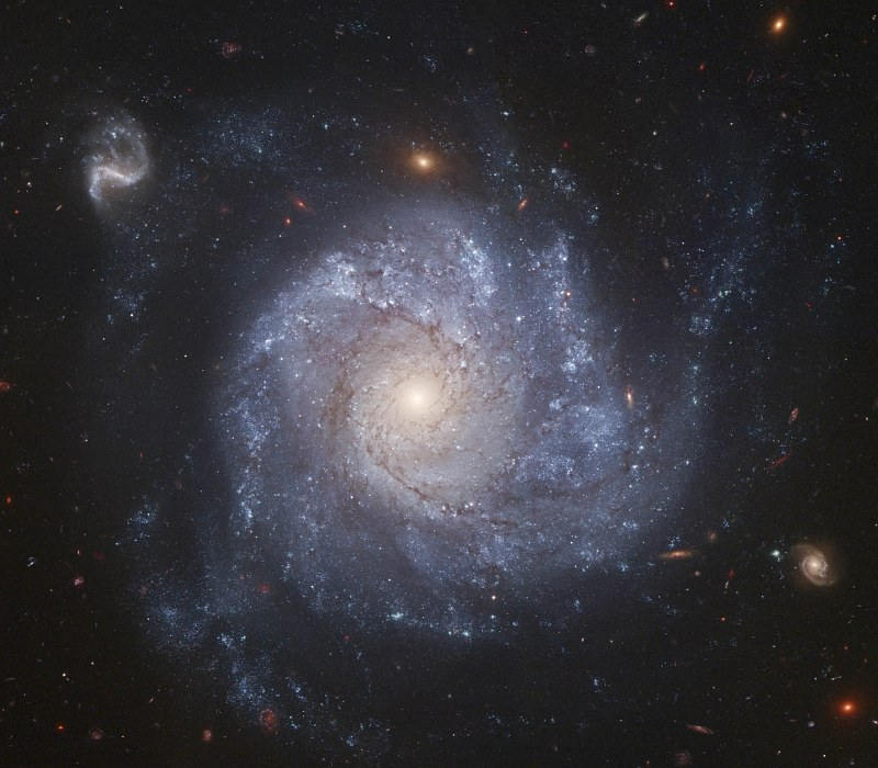 Spiral Galaxy NGC 1309, Eridanus Constellation. Photo Credit: Hubble Snaps Images of a Pinwheel-Shaped Galaxy, August 2005 and September 2005 (Release date: February 7, 2006), STScI-2006-07, NASA's Earth-orbiting Hubble Space Telescope (http://HubbleSite.org); The Hubble Heritage Team (STScI/AURA), A. Riess (STScI), European Space Agency (ESA, http://SpaceTelescope.org), National Aeronautics and Space Administration (NASA, http://www.nasa.gov), Government of the United States of America (USA).