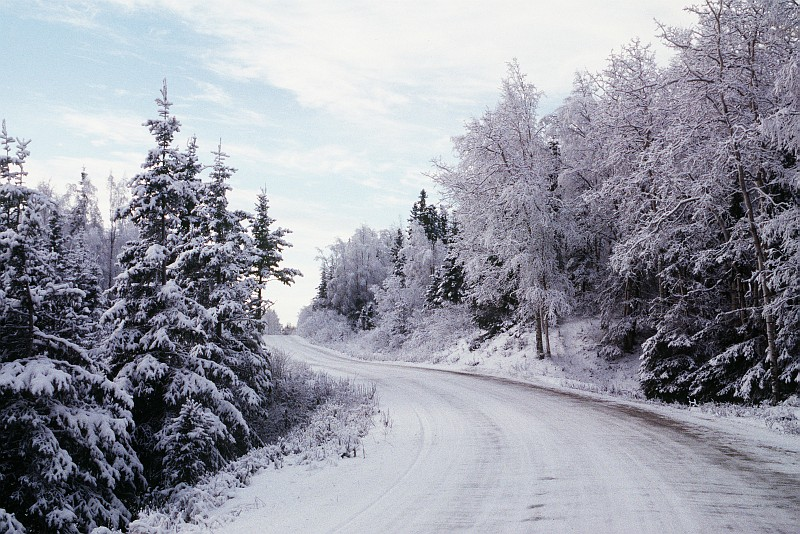 Pretty Winter Scene of a Snow-Covered Road and Trees, December 1995, Elmendorf Air Force Base, State of Alaska, USA. Photo Credit: MSgt. Thomas Coaxum, United States Air Force; Defense Visual Information Center (DVIC, http://www.DoDMedia.osd.mil, DFST9804125 and F3707SPT960004 (U)) and United States Air Force (USAF, http://www.af.mil), United States Department of Defense (DoD, http://www.DefenseLink.mil or http://www.dod.gov), Government of the United States of America (USA).